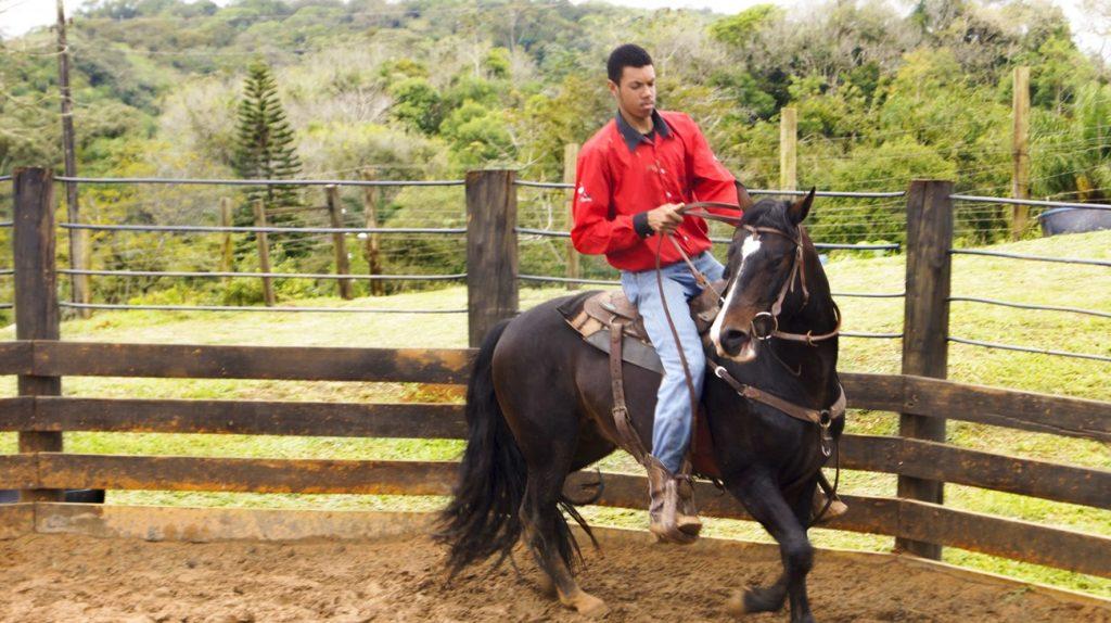 Turismo Rural em Joinville