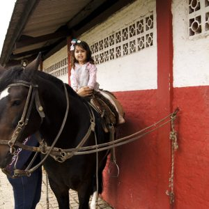 Passeio de cavalo em Joinville