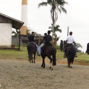 Passeio a Cavalo em Joinville